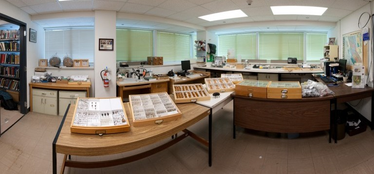 Inside the Entomology Collection