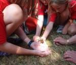 Several children holding a tarantula at a summer camp