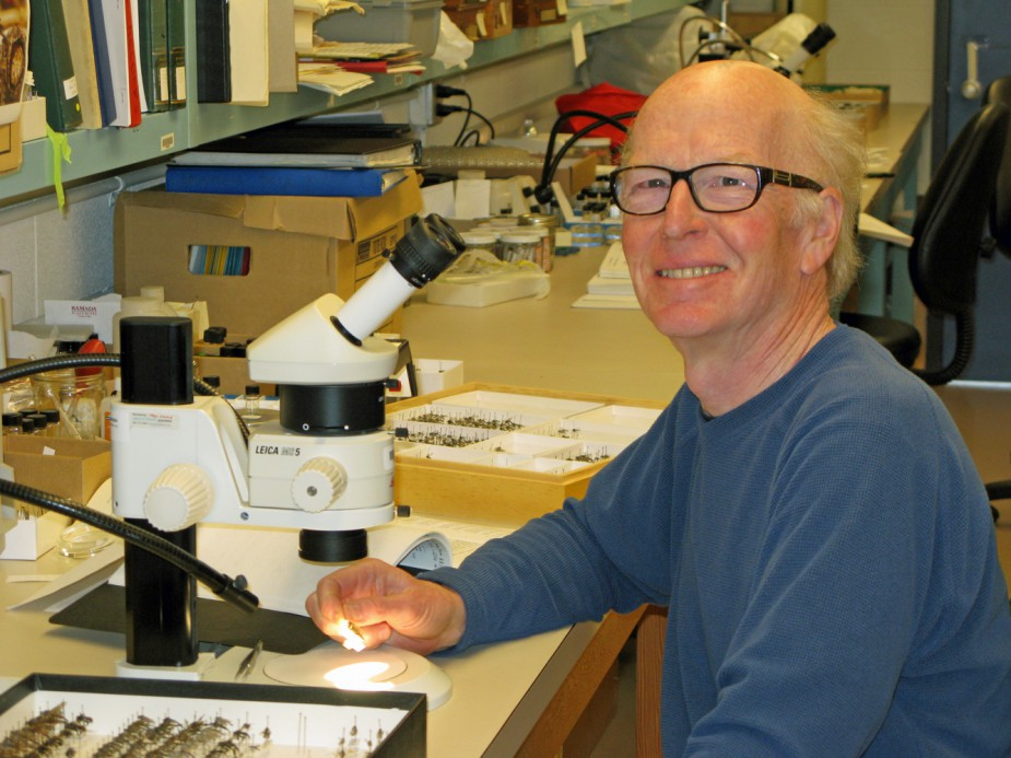 Figure 7. Rob Cannings, RBCM Curator of Entomology, 1980-2013.