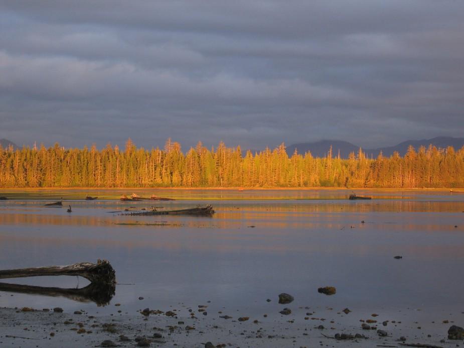 Masset Inlet Haida Gwaii Dawn