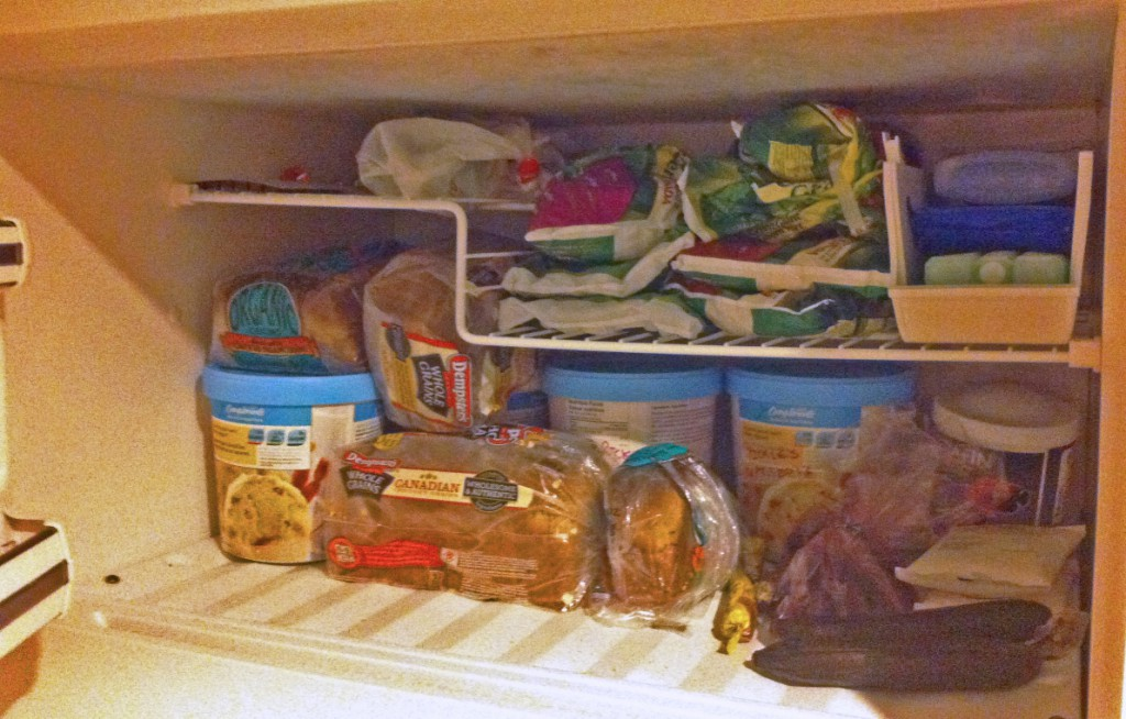A picture of our freezer, can you spot the squirrel?